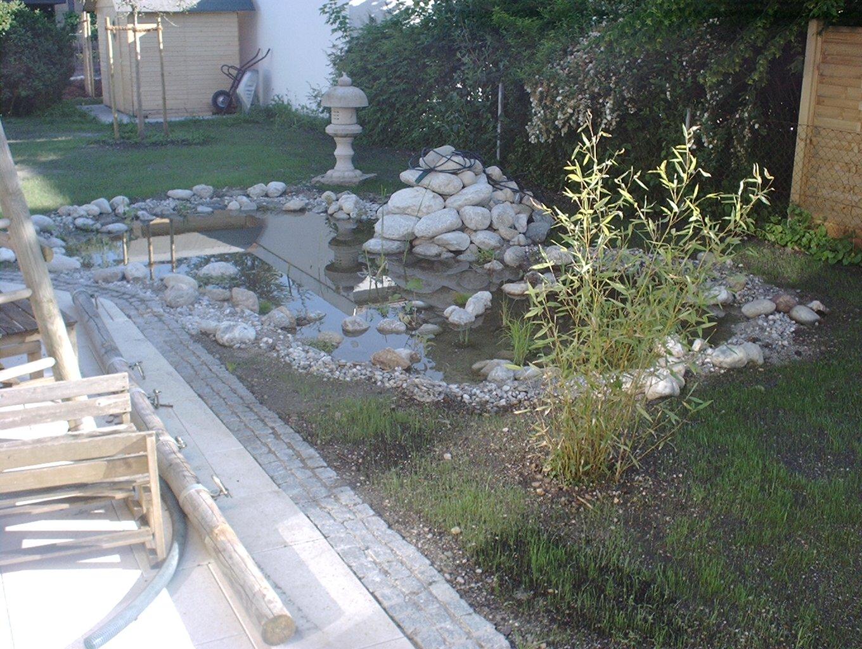 7 der Teich ist fertig  aber noch nicht eingewachsen